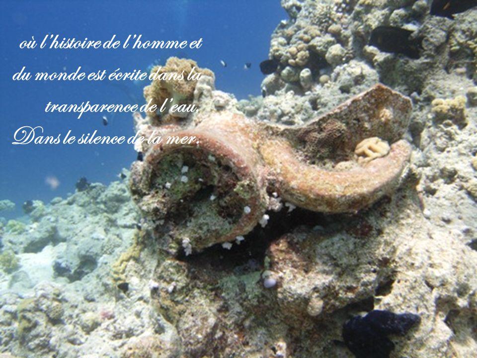 où lhistoire de lhomme et du monde est écrite dans la transparence de leau, Dans le silence de la mer.