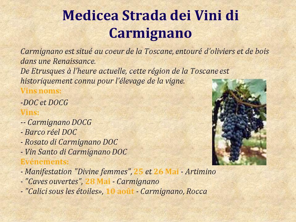 Medicea Strada dei Vini di Carmignano Carmignano est situé au coeur de la Toscane, entouré d oliviers et de bois dans une Renaissance.
