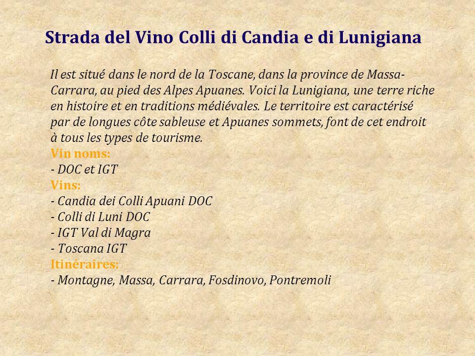 Strada del Vino Colli di Candia e di Lunigiana Il est situé dans le nord de la Toscane, dans la province de Massa- Carrara, au pied des Alpes Apuanes.
