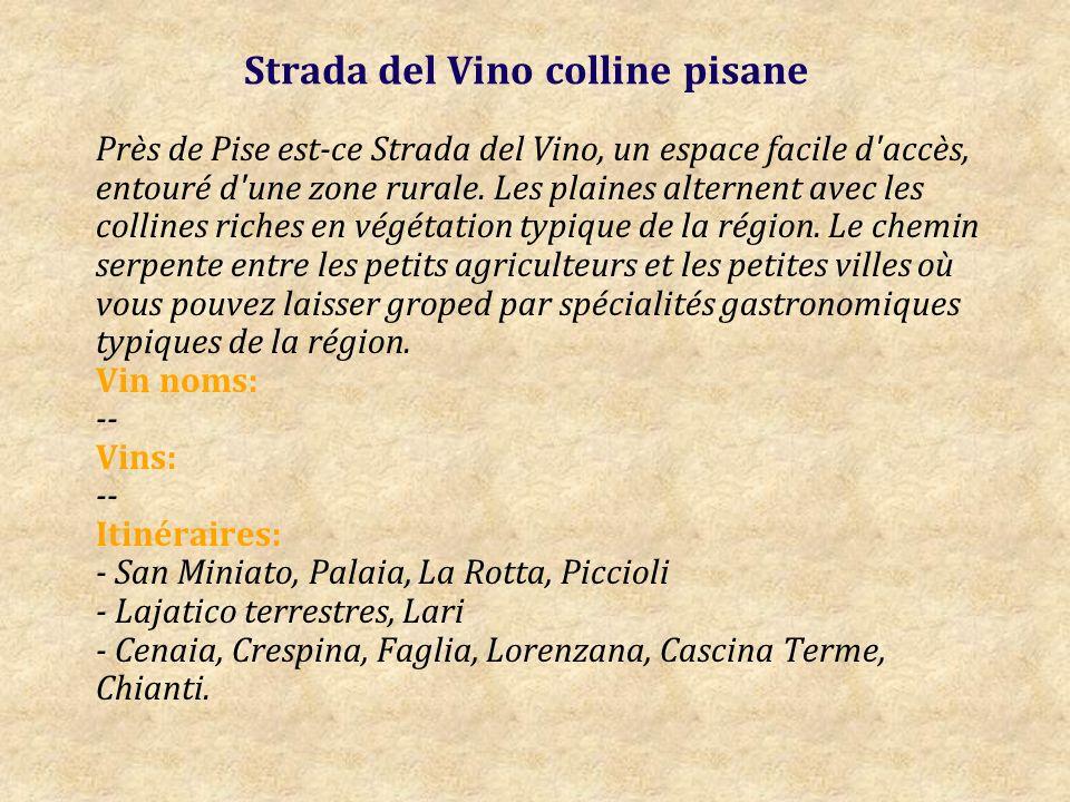 Strada del Vino colline pisane Près de Pise est-ce Strada del Vino, un espace facile d accès, entouré d une zone rurale.