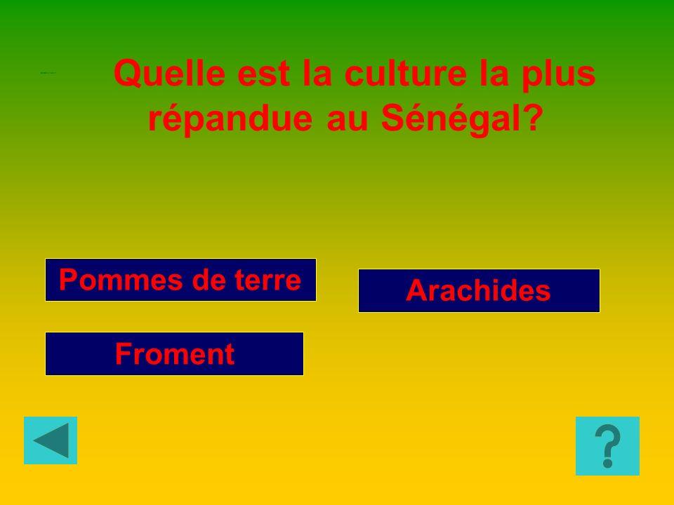 Chine, Japon et Vietnam Maroc, Tunisie et Algérie Sénégal, Burkina Faso et Mali Le mot « Maghreb » est utilisé pour indiquer : GEOGRAPHIE 1