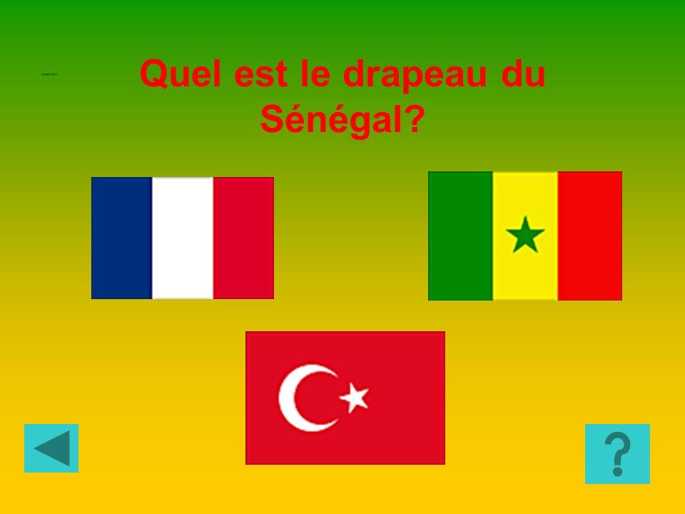 GEOGRAPHIE 4 La religion musulmane La religion bouddhiste La religion chrétienne Au Sénégal la religion la plus répandue est : GEOGRAPHIE 3