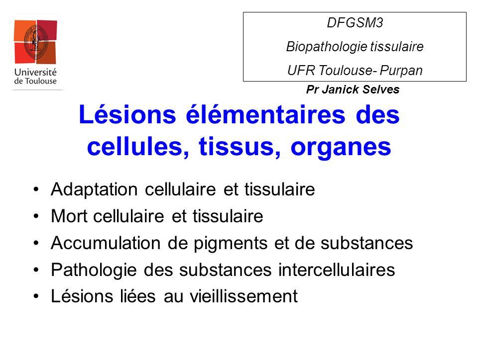 Lésions Dégénérescence cellulaire Mort cellulaire réversibleirréversible Membrane cellulaire Code génétique Système respiratoire Structures protéiques