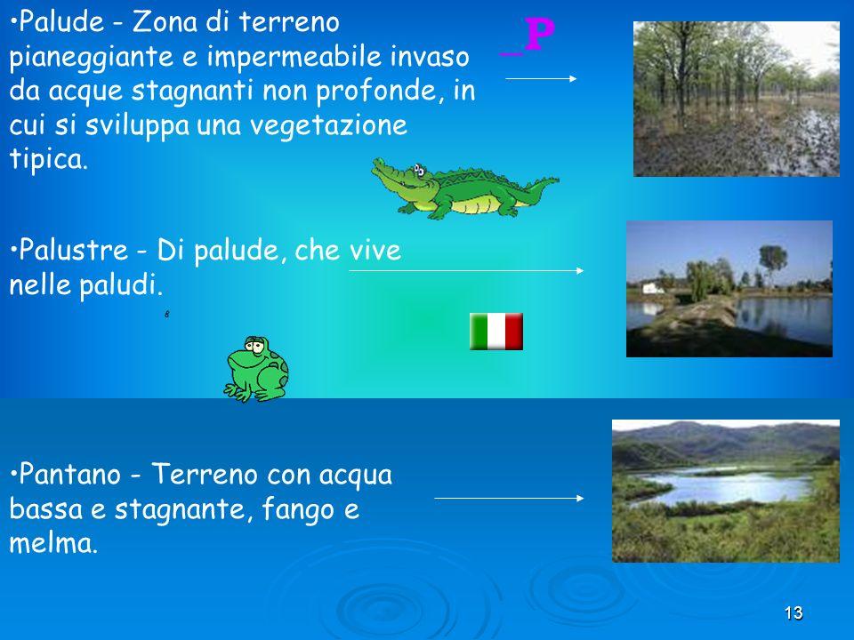 13 Palude - Zona di terreno pianeggiante e impermeabile invaso da acque stagnanti non profonde, in cui si sviluppa una vegetazione tipica.