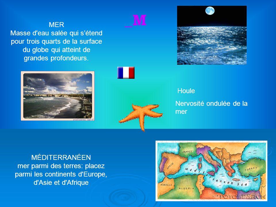 5 MER Masse d eau salée qui sétend pour trois quarts de la surface du globe qui atteint de grandes profondeurs.