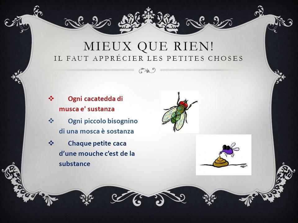 Ogni cacatedda di musca e' sustanza Ogni piccolo bisognino di una mosca è sostanza Chaque petite caca dune mouche cest de la substance MIEUX QUE RIEN!