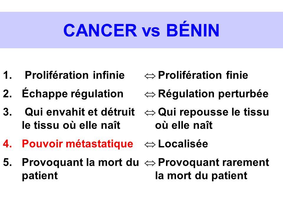 CANCER vs BÉNIN Prolifération finie Régulation perturbée Qui repousse le tissu où elle naît Localisée Provoquant rarement la mort du patient 1. Prolif