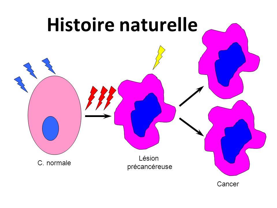Histoire naturelle C. normale Lésion précancéreuse Cancer