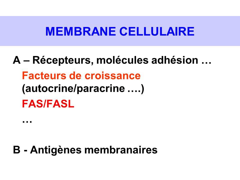 MEMBRANE CELLULAIRE A – Récepteurs, molécules adhésion … Facteurs de croissance (autocrine/paracrine ….) FAS/FASL … B - Antigènes membranaires