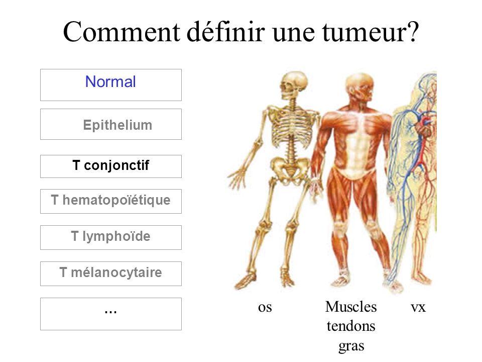 Comment définir une tumeur? Normal Epithelium T conjonctif T hematopoïétique T lymphoïde T mélanocytaire … osMuscles tendons gras vx