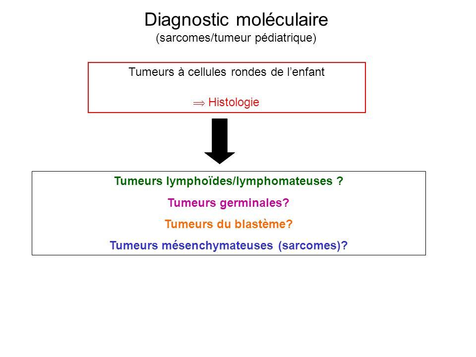 Diagnostic moléculaire (sarcomes/tumeur pédiatrique) Tumeurs lymphoïdes/lymphomateuses ? Tumeurs germinales? Tumeurs du blastème? Tumeurs mésenchymate