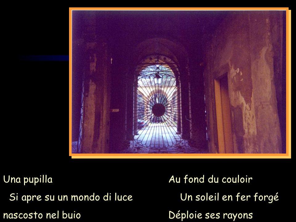 Au fond du couloir Un soleil en fer forgé Déploie ses rayons Una pupilla Si apre su un mondo di luce nascosto nel buio