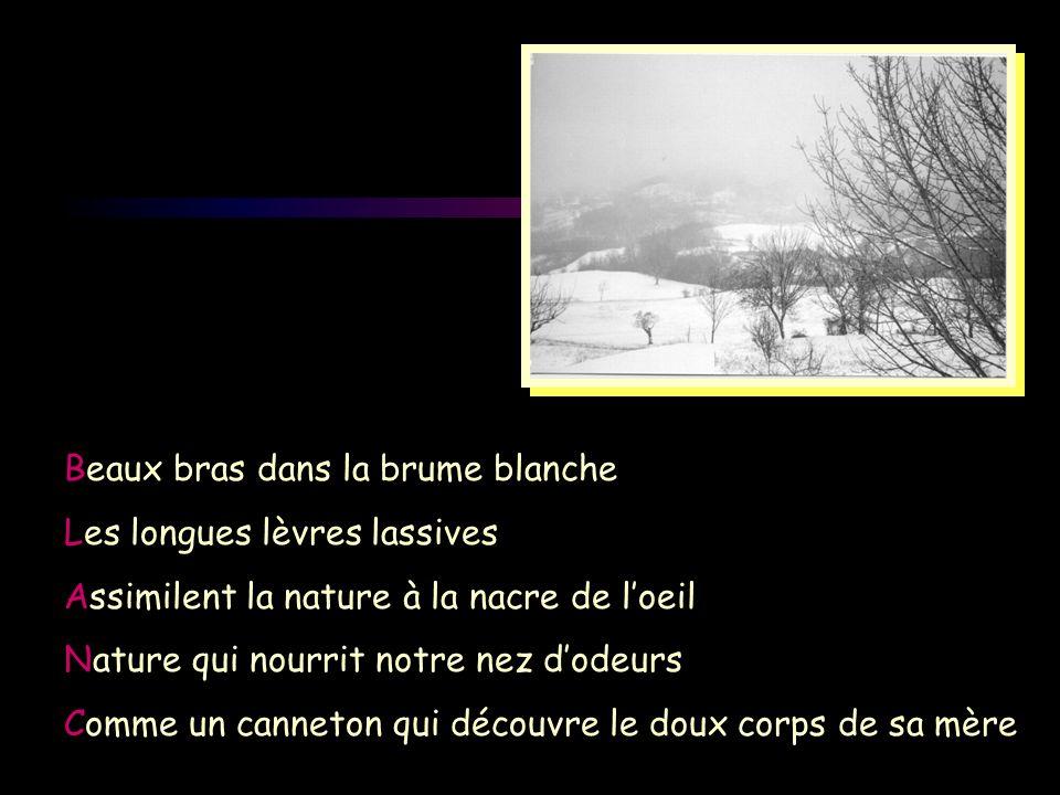 Beaux bras dans la brume blanche Les longues lèvres lassives Assimilent la nature à la nacre de loeil Nature qui nourrit notre nez dodeurs Comme un ca