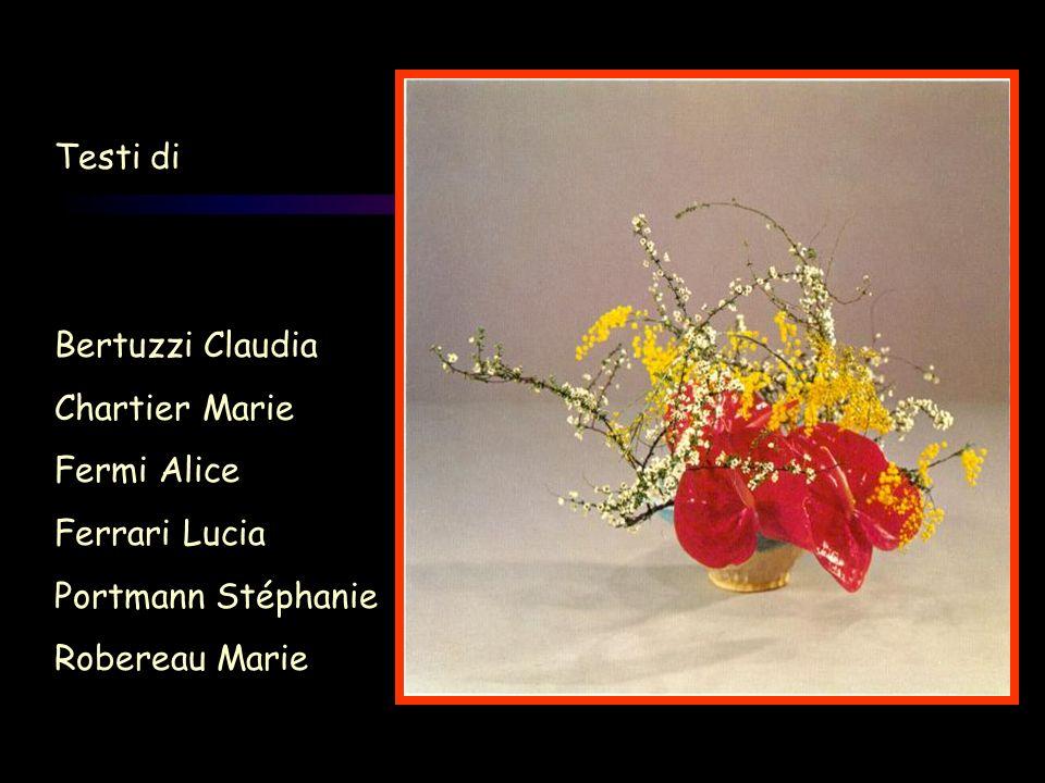 Testi di Bertuzzi Claudia Chartier Marie Fermi Alice Ferrari Lucia Portmann Stéphanie Robereau Marie