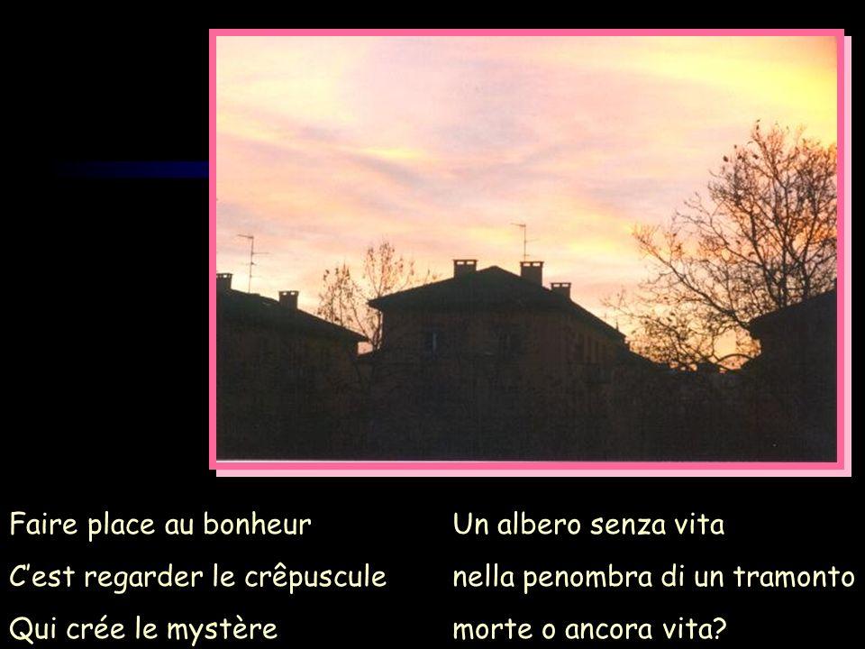Faire place au bonheur Cest regarder le crêpuscule Qui crée le mystère Un albero senza vita nella penombra di un tramonto morte o ancora vita?