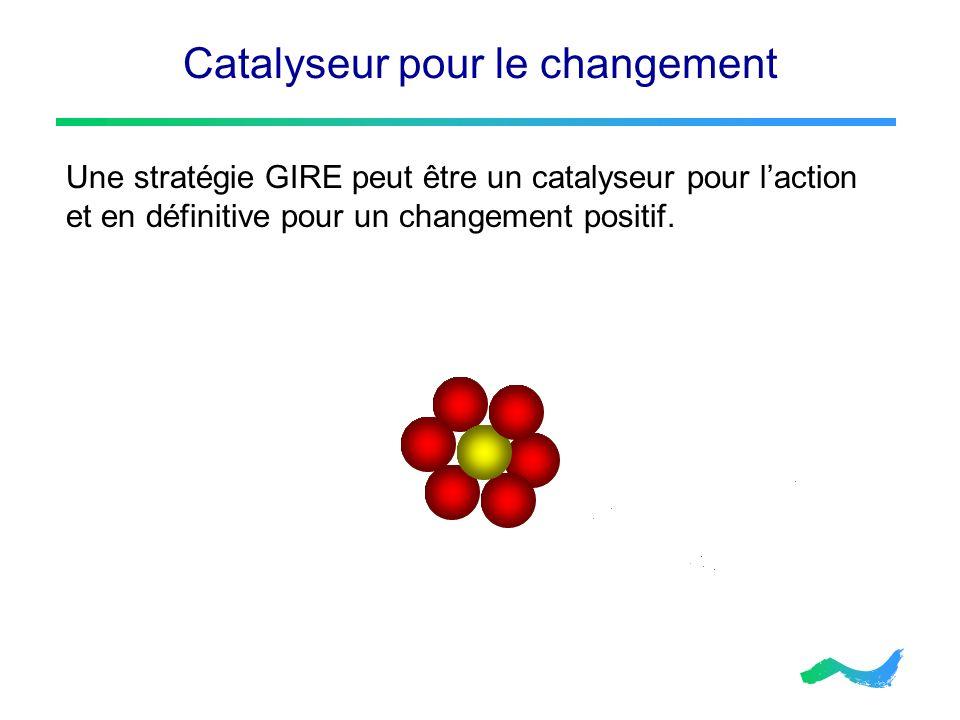 Catalyseur pour le changement Une stratégie GIRE peut être un catalyseur pour laction et en définitive pour un changement positif.
