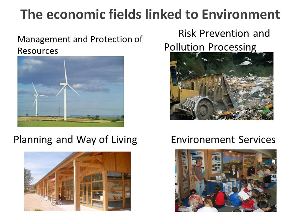 Les secteurs de lenvironnement Management and Protection of Resources Risk Prevention and Pollution Processing Planning and Way of LivingEnvironement Services The economic fields linked to Environment