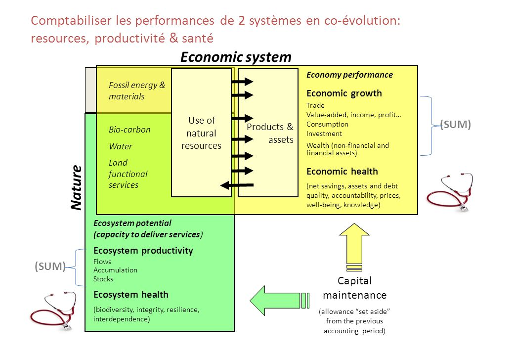 Products & assets Fossil energy & materials Bio-carbon Water Land functional services Economy performance Economic growth Trade Value-added, income, profit… Consumption Investment Wealth (non-financial and financial assets) Economic health (net savings, assets and debt quality, accountability, prices, well-being, knowledge) Ecosystem potential (capacity to deliver services) Ecosystem productivity Flows Accumulation Stocks Ecosystem health (biodiversity, integrity, resilience, interdependence) Capital maintenance (allowance set aside from the previous accounting period) Comptabiliser les performances de 2 systèmes en co-évolution: resources, productivité & santé Economic system Nature (SUM) Use of natural resources