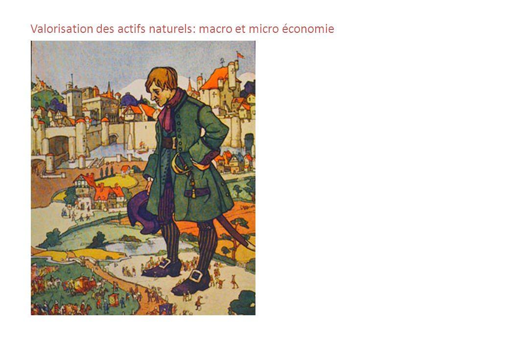 Valorisation des actifs naturels: macro et micro économie
