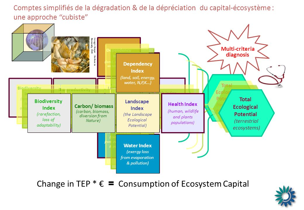 Comptes simplifiés de la dégradation & de la dépréciation du capital-écosystème : une approche cubiste Multi-criteria diagnosis Georges Braque – Harbour in Normandy, 1909 Water Index (exergy loss from evaporation & pollution) Bio-productivity Index (carbon, biomass, diversion from Nature) Biodiversity Index (rarefaction, loss of adaptability) Dependency Index (land, soil, energy, water, N,P,K...) Landscape Index (the Landscape Ecological Potential) Health Index (human, wildlife and plants populations) Total Ecological Potential (terrestrial ecosystems) Total Ecological Potential (terrestrial ecosystems) Health Index (human, wildlife and plants populations) Water Index (exergy loss from evaporation & pollution) Landscape Index (the Landscape Ecological Potential) Carbon/ biomass (carbon, biomass, diversion from Nature) Biodiversity Index (rarefaction, loss of adaptability) Dependency Index (land, soil, energy, water, N,P,K...) Change in TEP * = Consumption of Ecosystem Capital