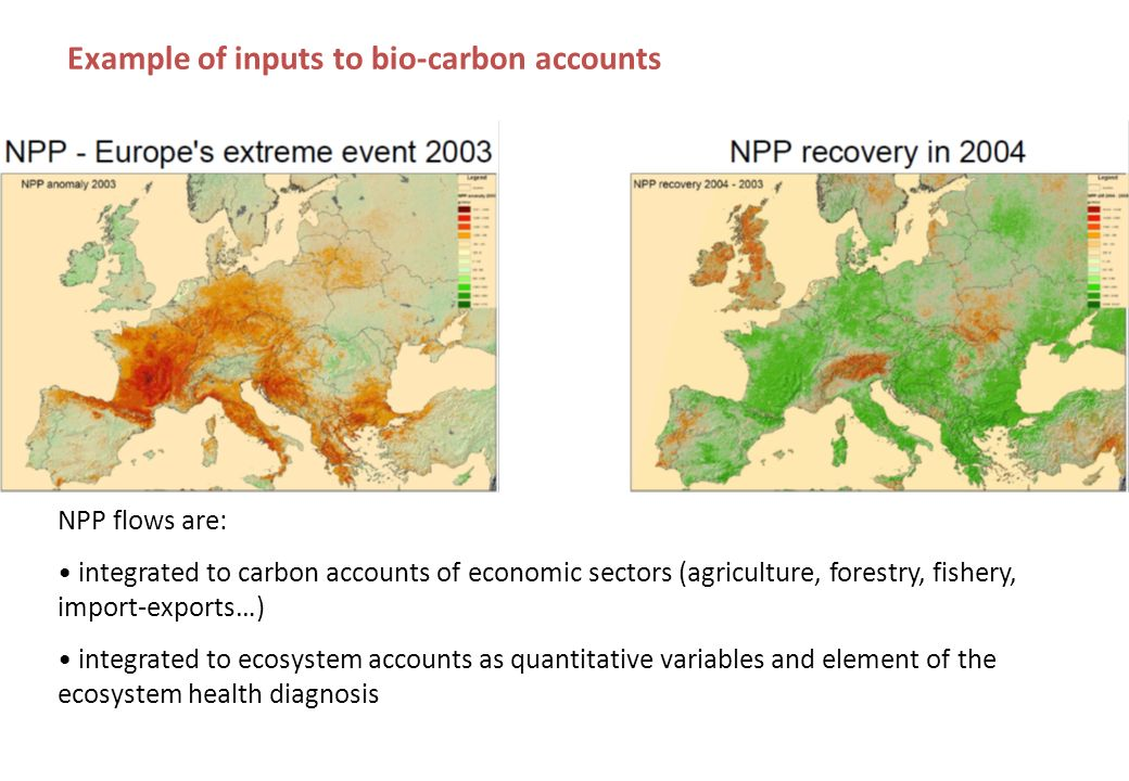 Example of inputs to bio-carbon accounts NPP flows are: integrated to carbon accounts of economic sectors (agriculture, forestry, fishery, import-exports…) integrated to ecosystem accounts as quantitative variables and element of the ecosystem health diagnosis