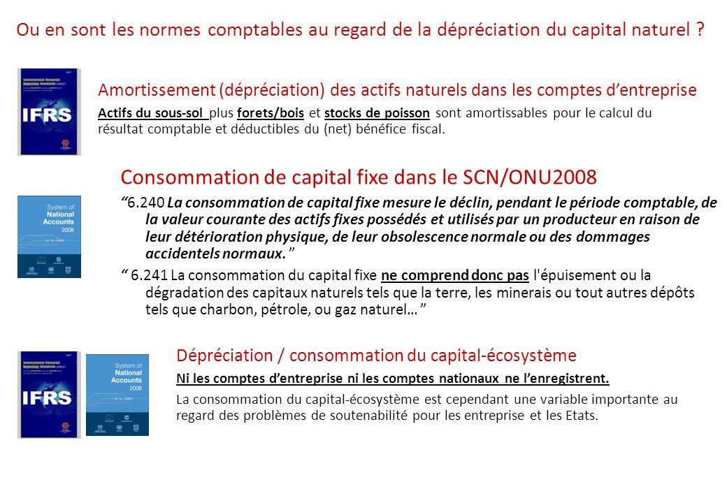 Ou en sont les normes comptables au regard de la dépréciation du capital naturel .