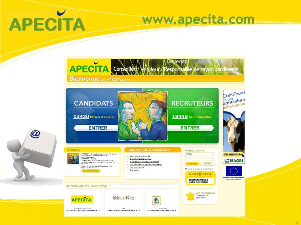 www.apecita.com 4