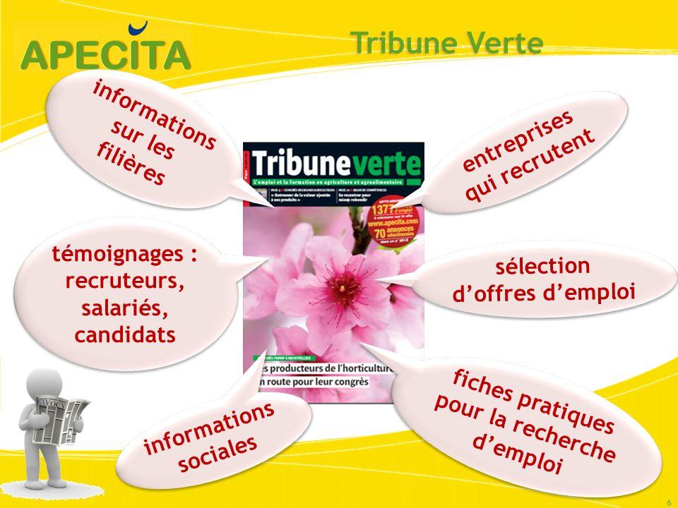 Tribune Verte 6 fiches pratiques pour la recherche demploi informations sociales témoignages : recruteurs, salariés, candidats informations sur les fi