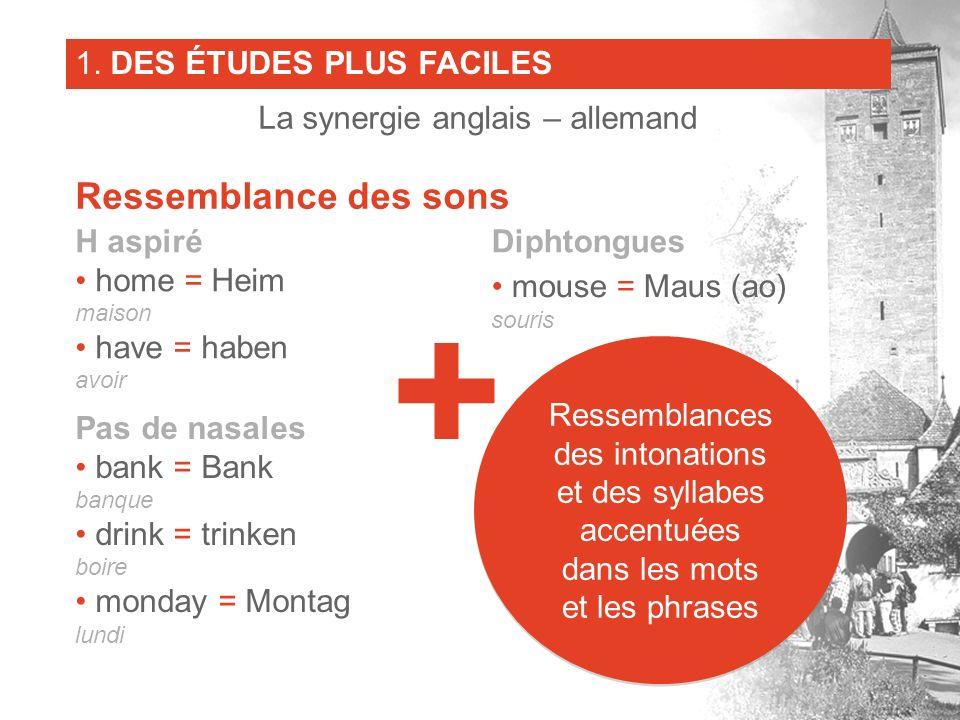 H aspiré home = Heim maison have = haben avoir Pas de nasales bank = Bank banque drink = trinken boire monday = Montag lundi Diphtongues mouse = Maus