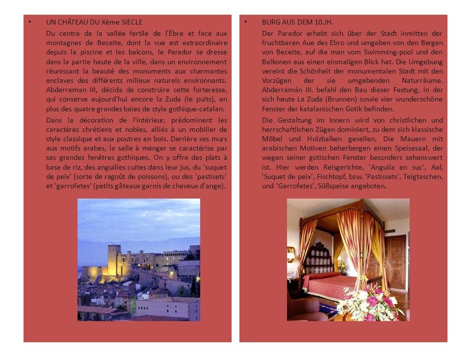 UN CHÂTEAU DU Xème SIÈCLE Du centre de la vallée fertile de l'Èbre et face aux montagnes de Beceite, dont la vue est extraordinaire depuis la piscine