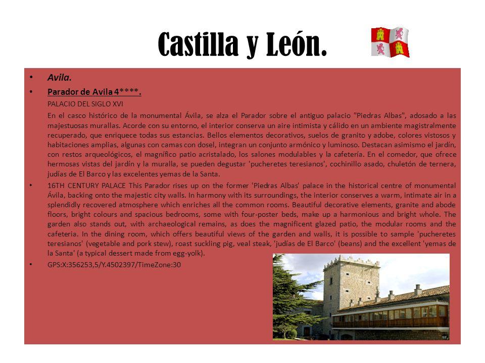 Castilla y León. Avila. Parador de Avila 4****. PALACIO DEL SIGLO XVI En el casco histórico de la monumental Ávila, se alza el Parador sobre el antigu