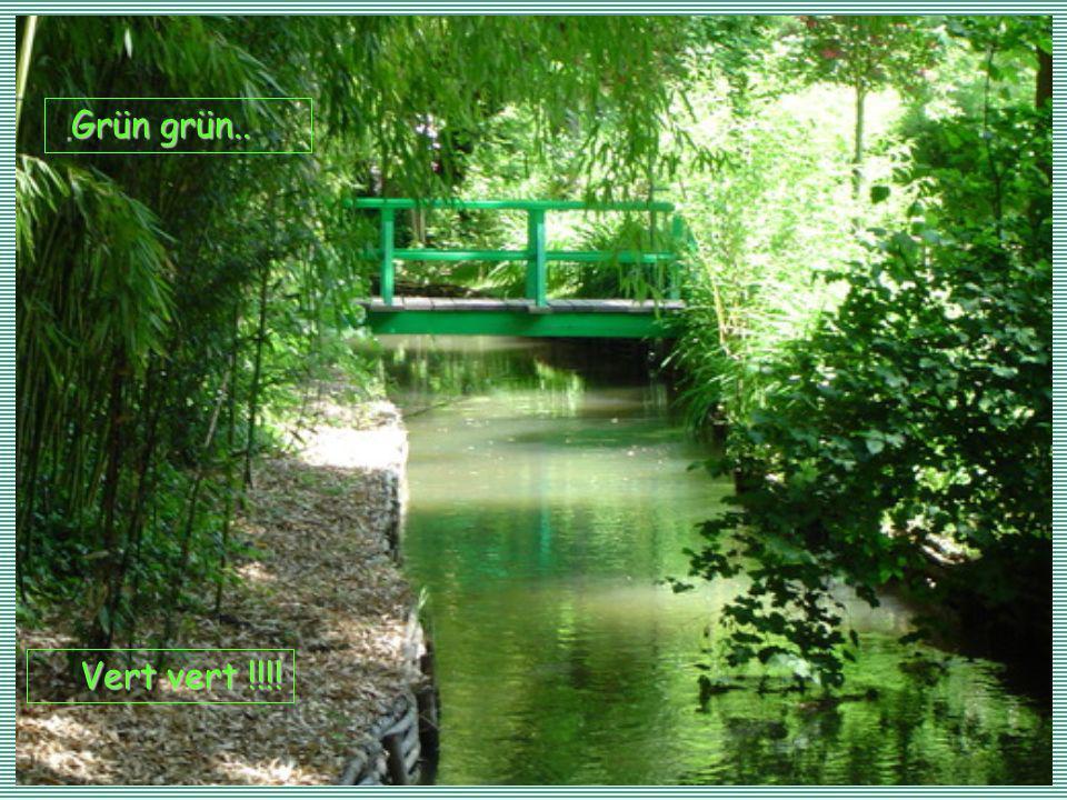 Vert vert !!!! G GG Grün grün..