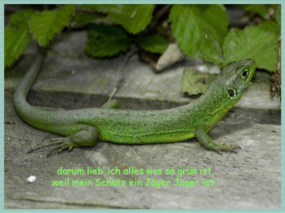 darum lieb' ich alles was so grün ist, darum lieb' ich alles was so grün ist, weil mein Schatz ein Jäger Jäger ist !