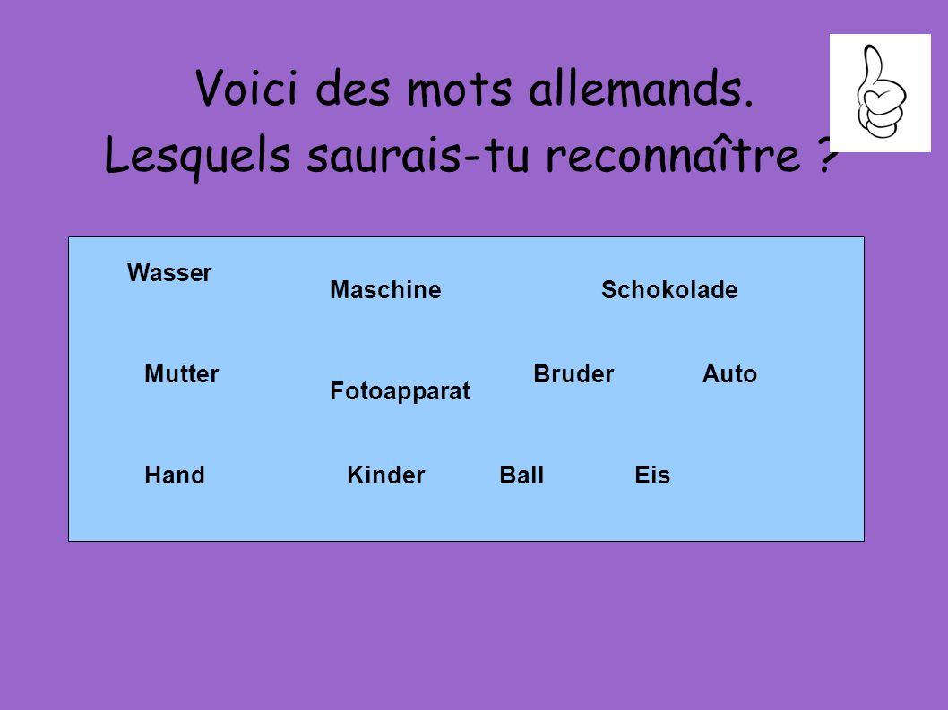 Voici des mots allemands. Lesquels saurais-tu reconnaître ? Wasser Mutter Maschine Fotoapparat Schokolade AutoBruder EisHandKinderBall