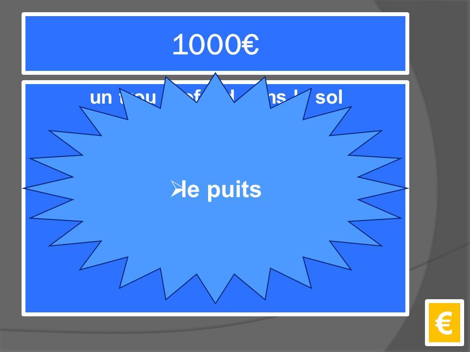 1000€ un trou profond dans le sol pour en tirer de l'eau €  le puits