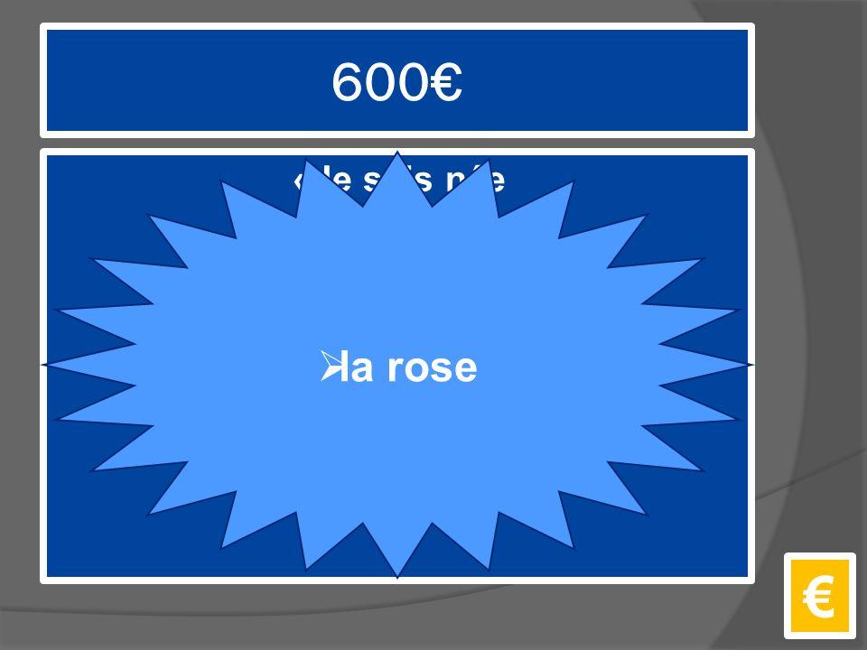 600€ «Je suis née en même temps que le soleil.» €  la rose