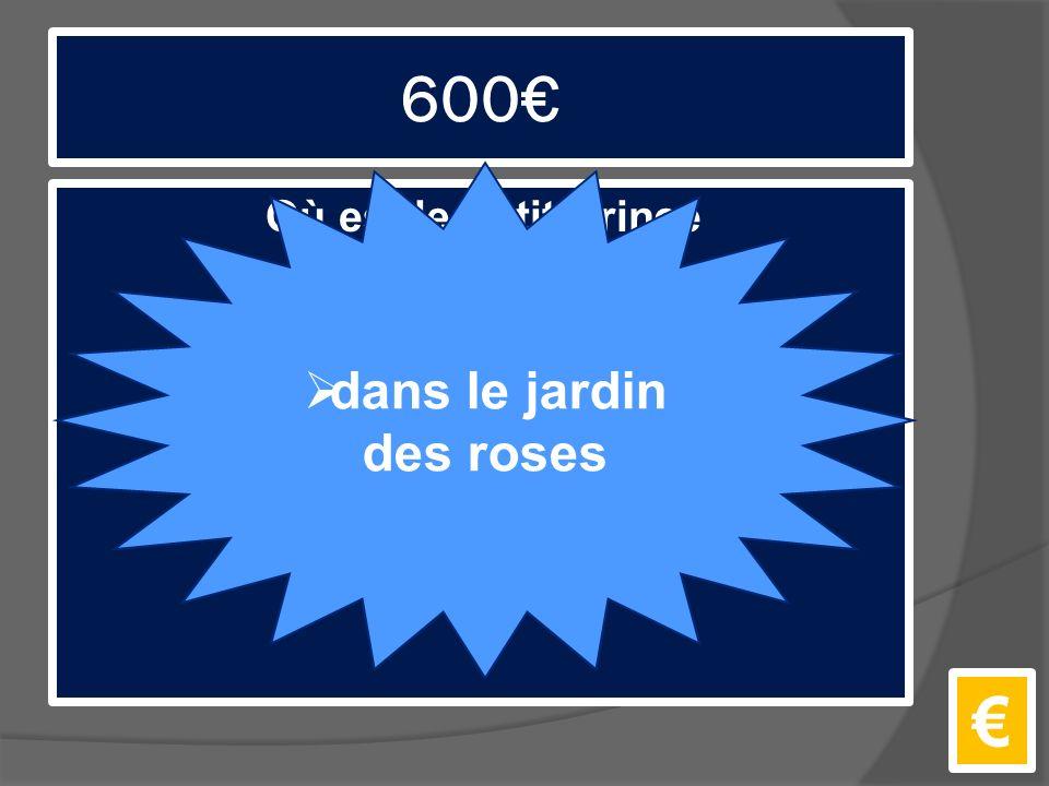 600€ Où est le Petit Prince quand il pleure pour la première fois? €  dans le jardin des roses