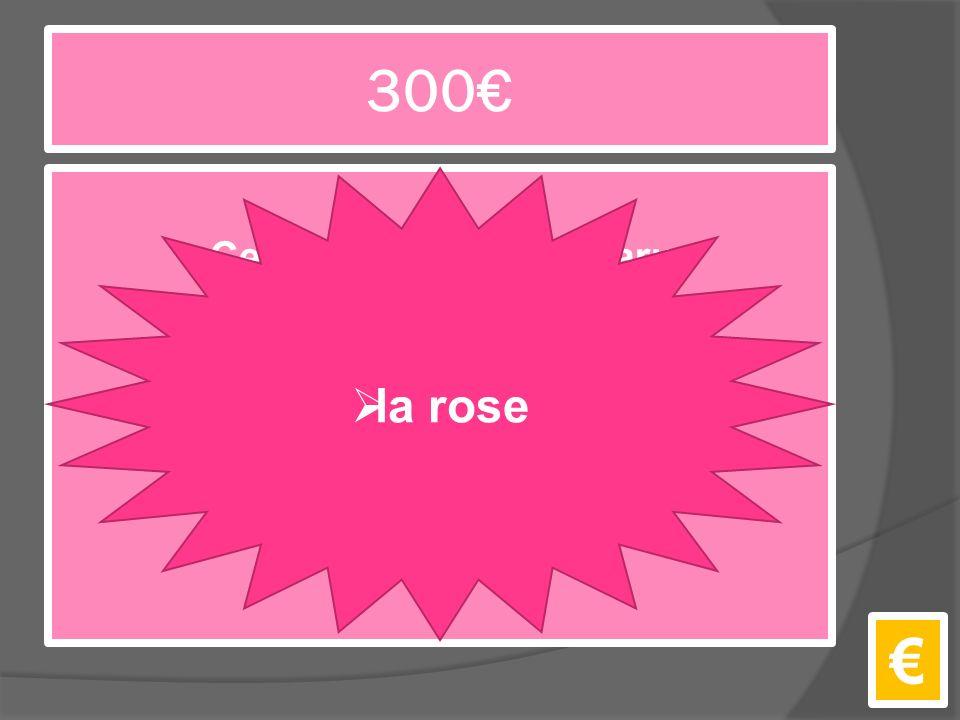 300€ Ce personnage a apparu un matin sur la planète du Petit Prince. €  la rose
