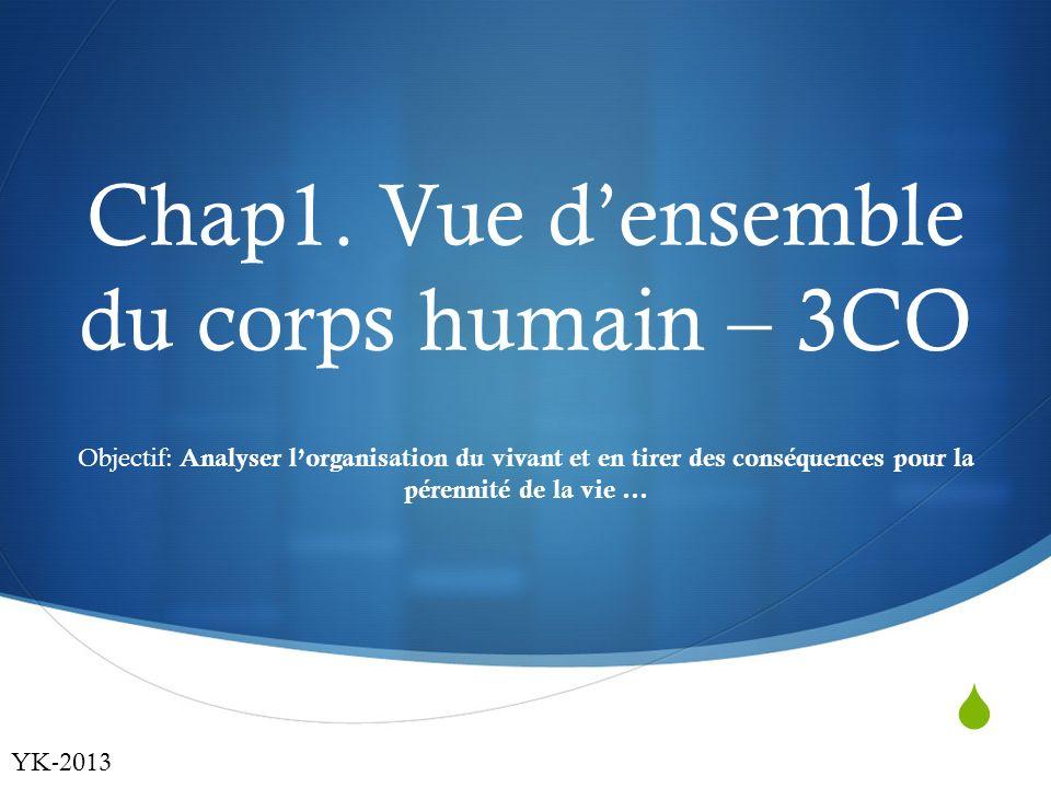  Chap1. Vue d'ensemble du corps humain – 3CO Objectif: Analyser l'organisation du vivant et en tirer des conséquences pour la pérennité de la vie … Y