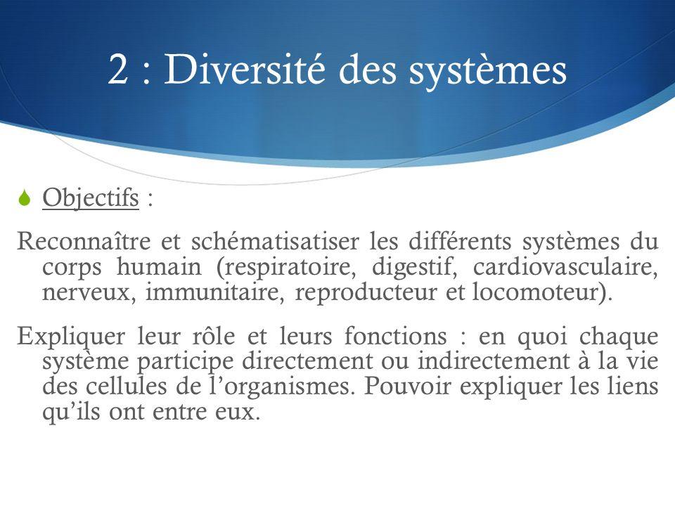 2 : Diversité des systèmes  Objectifs : Reconnaître et schématisatiser les différents systèmes du corps humain (respiratoire, digestif, cardiovascula