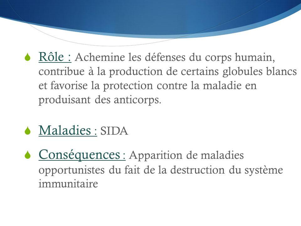  Rôle : Achemine les défenses du corps humain, contribue à la production de certains globules blancs et favorise la protection contre la maladie en p