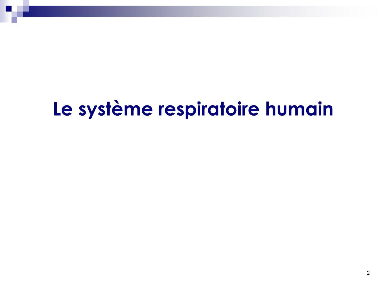 2 Le système respiratoire humain