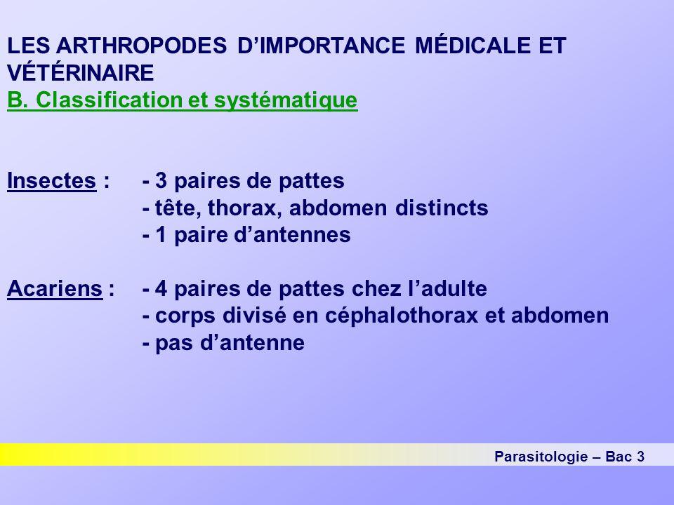 Parasitologie – Bac 3 LES ARTHROPODES D'IMPORTANCE MÉDICALE ET VÉTÉRINAIRE B.