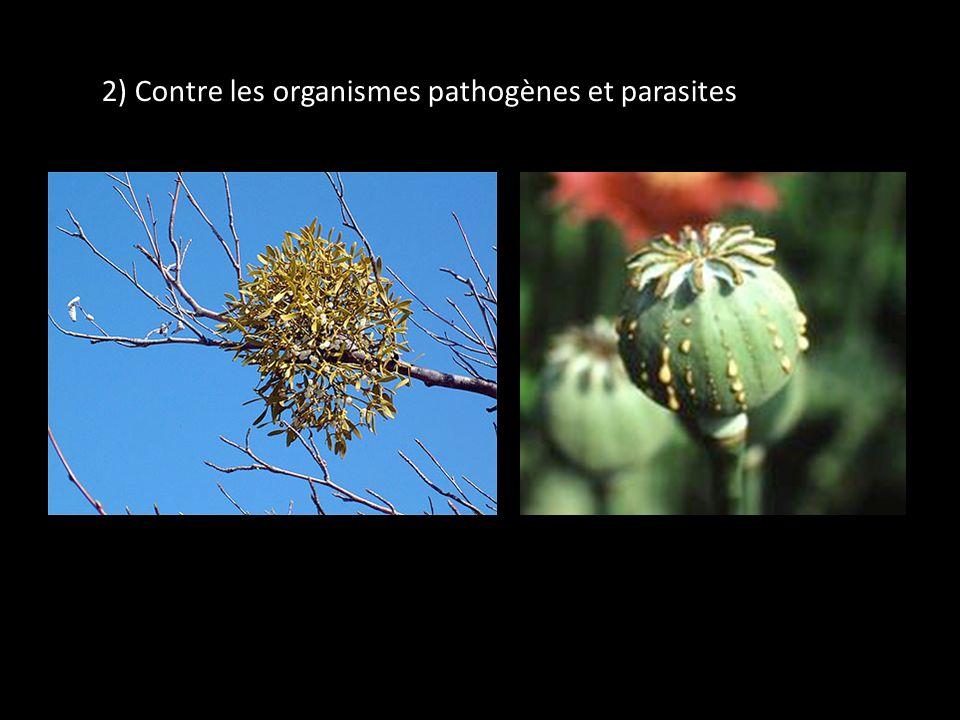 2) Contre les organismes pathogènes et parasites