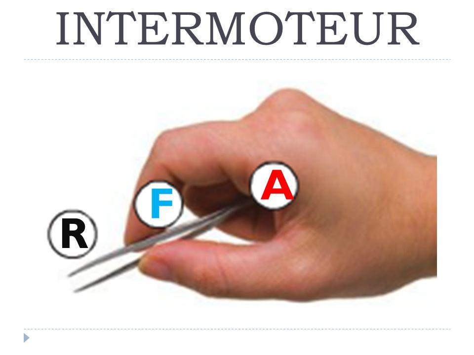 INTERMOTEUR A R F