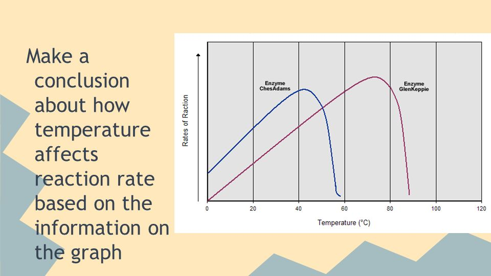 how does temperature affect the rate of a reaction essay