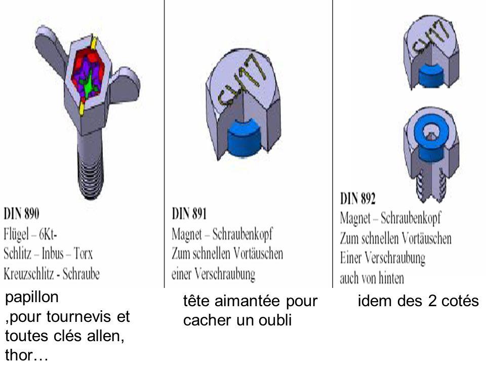 Vis avec sonde ou charge explosive anti-démontageà clavette incorporée