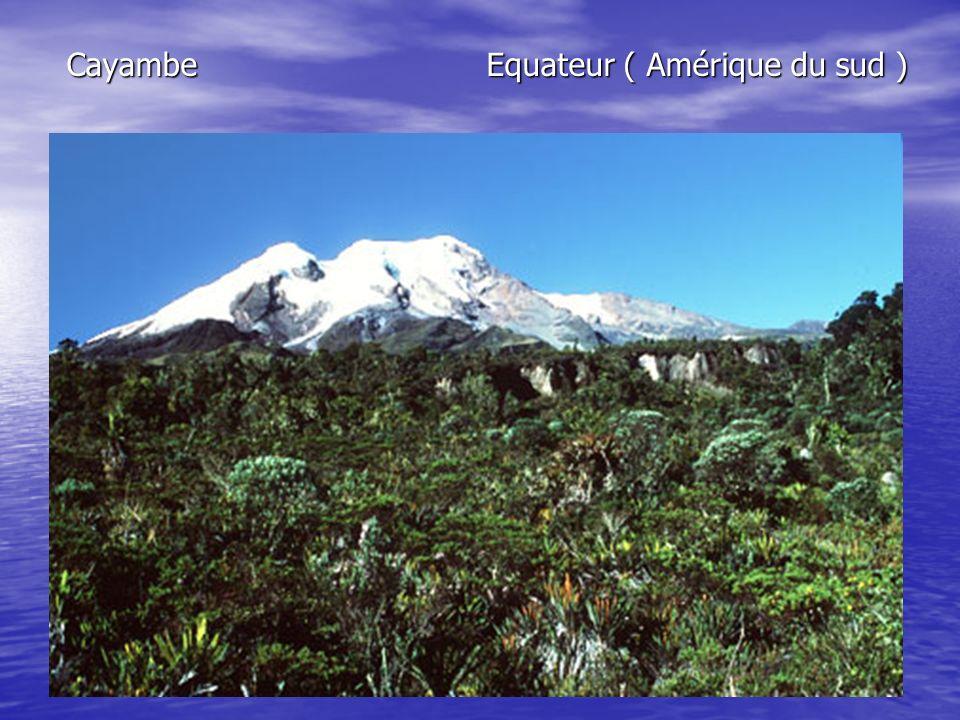 Cayambe Equateur ( Amérique du sud )