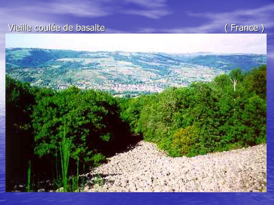 Vieille coulée de basalte ( France )