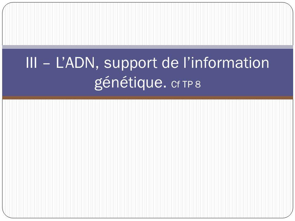 III – L'ADN, support de l'information génétique. Cf TP 8